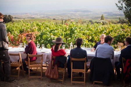 """picnic in a traditional winery in Rioja"""