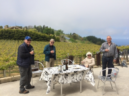 Visit and tasting into the winerie